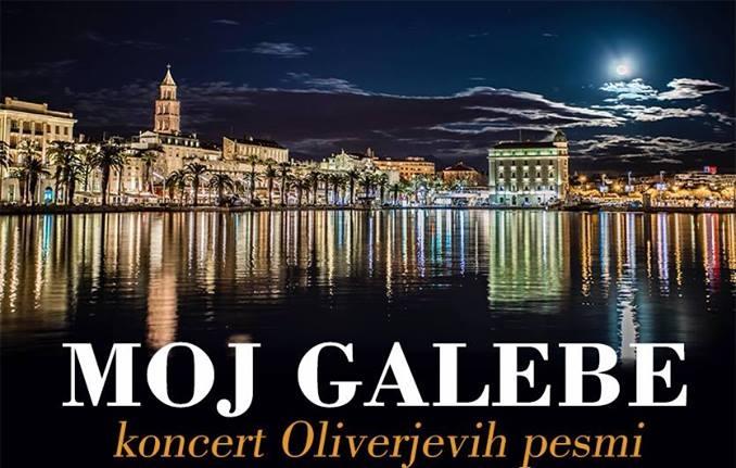 MOJ GALEBE (koncert Oliverjevih pesmi)